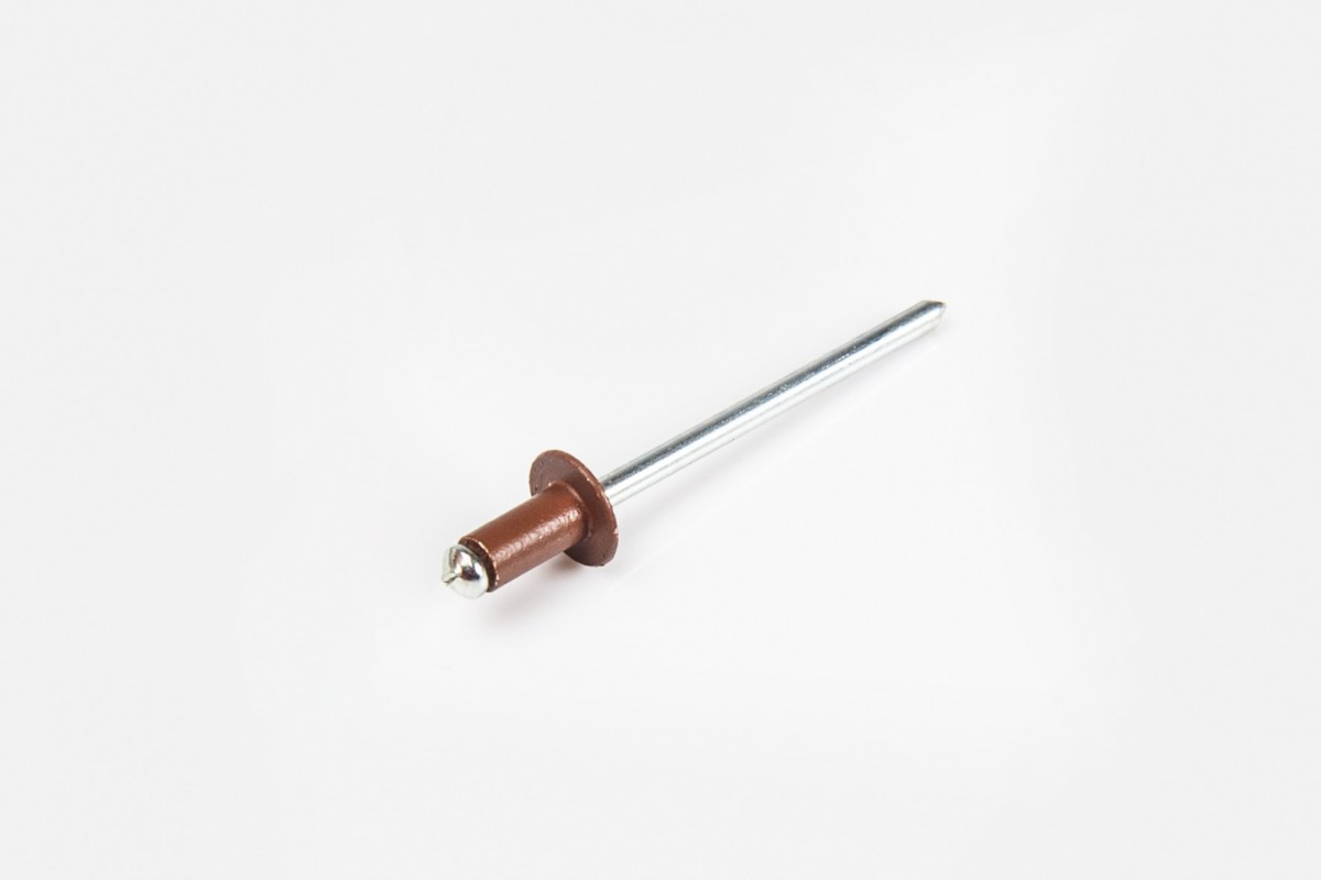 Ø4 x 8 mm rivet, Golden Oak